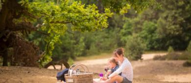 Staycation Nationaal Park Hoge Kempen